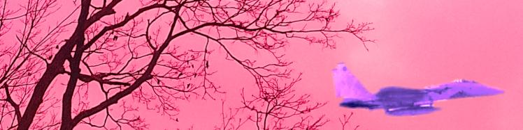 cropped-web-banner-hg-pink-jet1.png