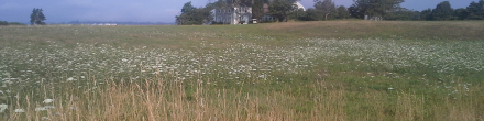 Web Banner HG Queen Anne's field